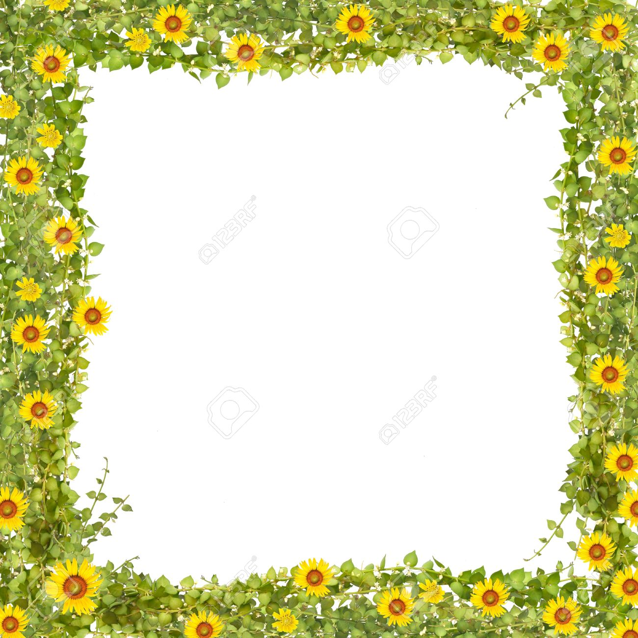 Million Heart Tree Frame With Sunflower Frame Stock Photo, Picture ...