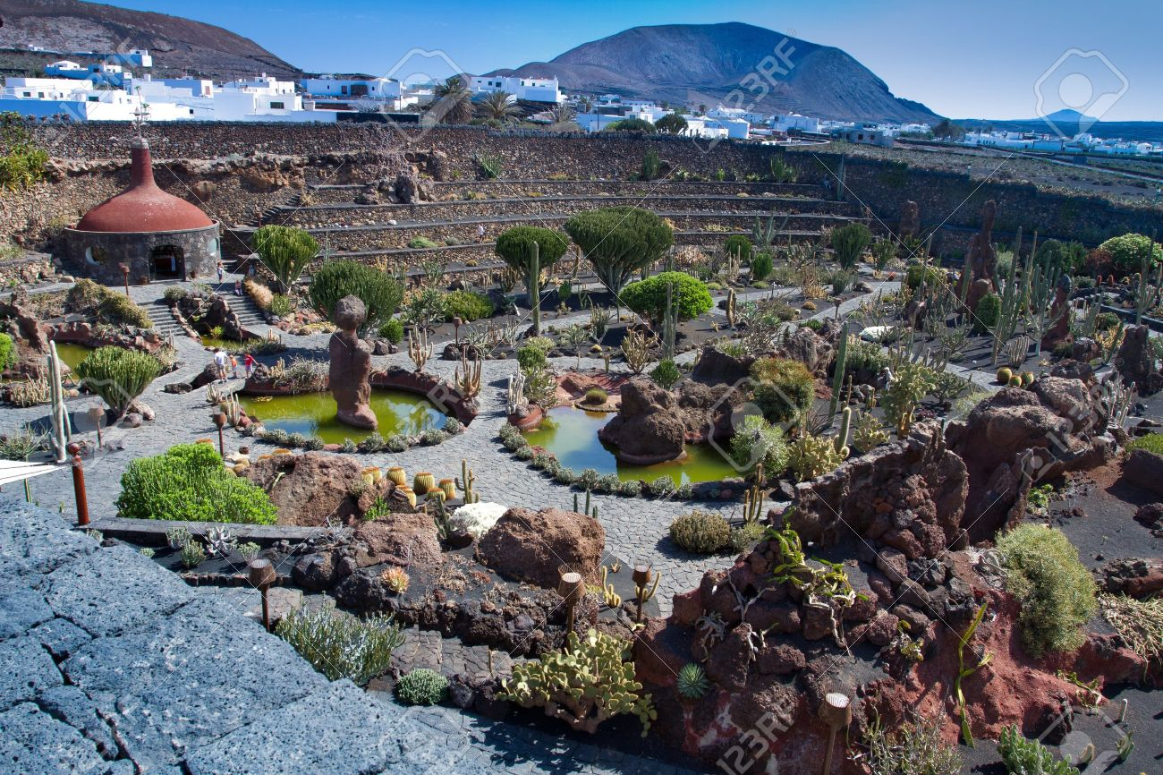 jardin de cactus at lanzarote island stock photo 15410695