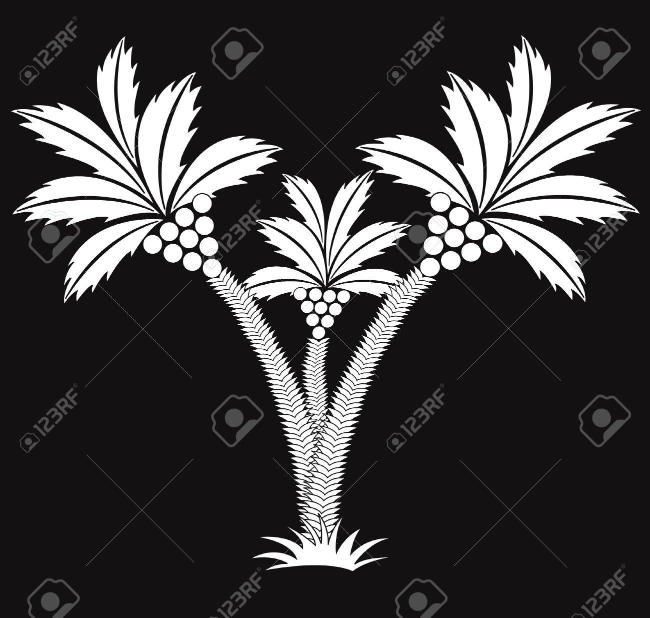 three black and white palms. Stock Vector - 12413497