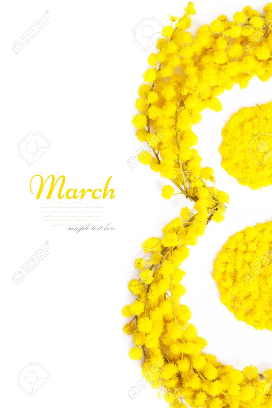 Greeting Card International Women's Day on March 8th. Branches of mimosa in the form of number eight - 79488069