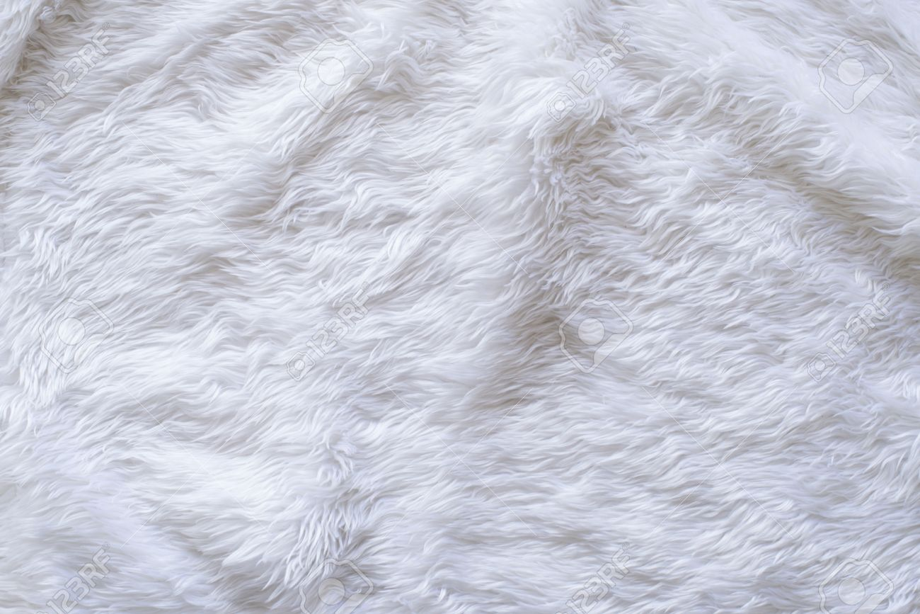 white carpet background. beige carpet background: white fur texture background stock photo t