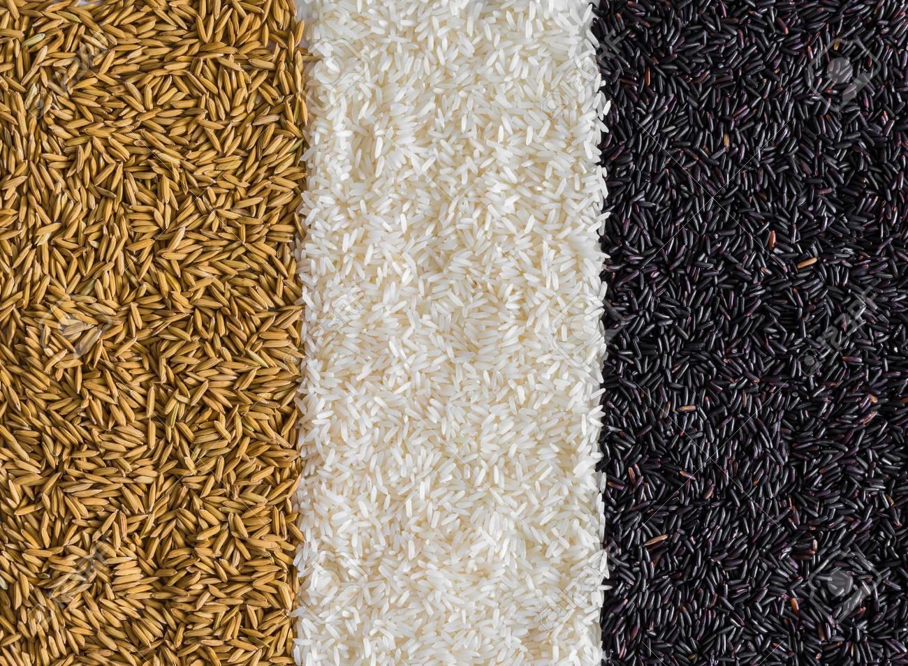 Food background with three rows of rice varieties : brown rice, black rice, white (jasmine) rice - 35911652