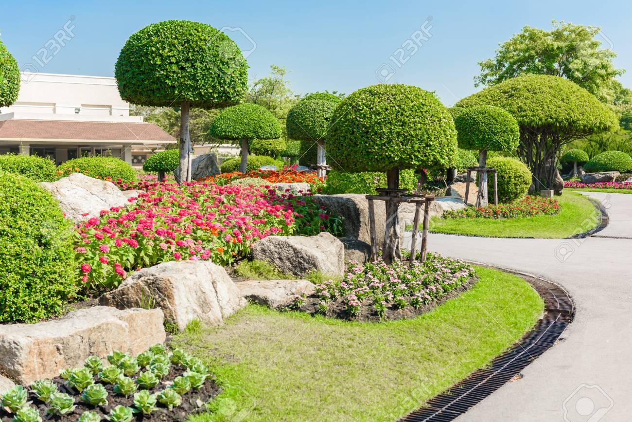 Jardinería Y Paisajismo Con Los árboles Y Plantas Decorativas Fotos ...