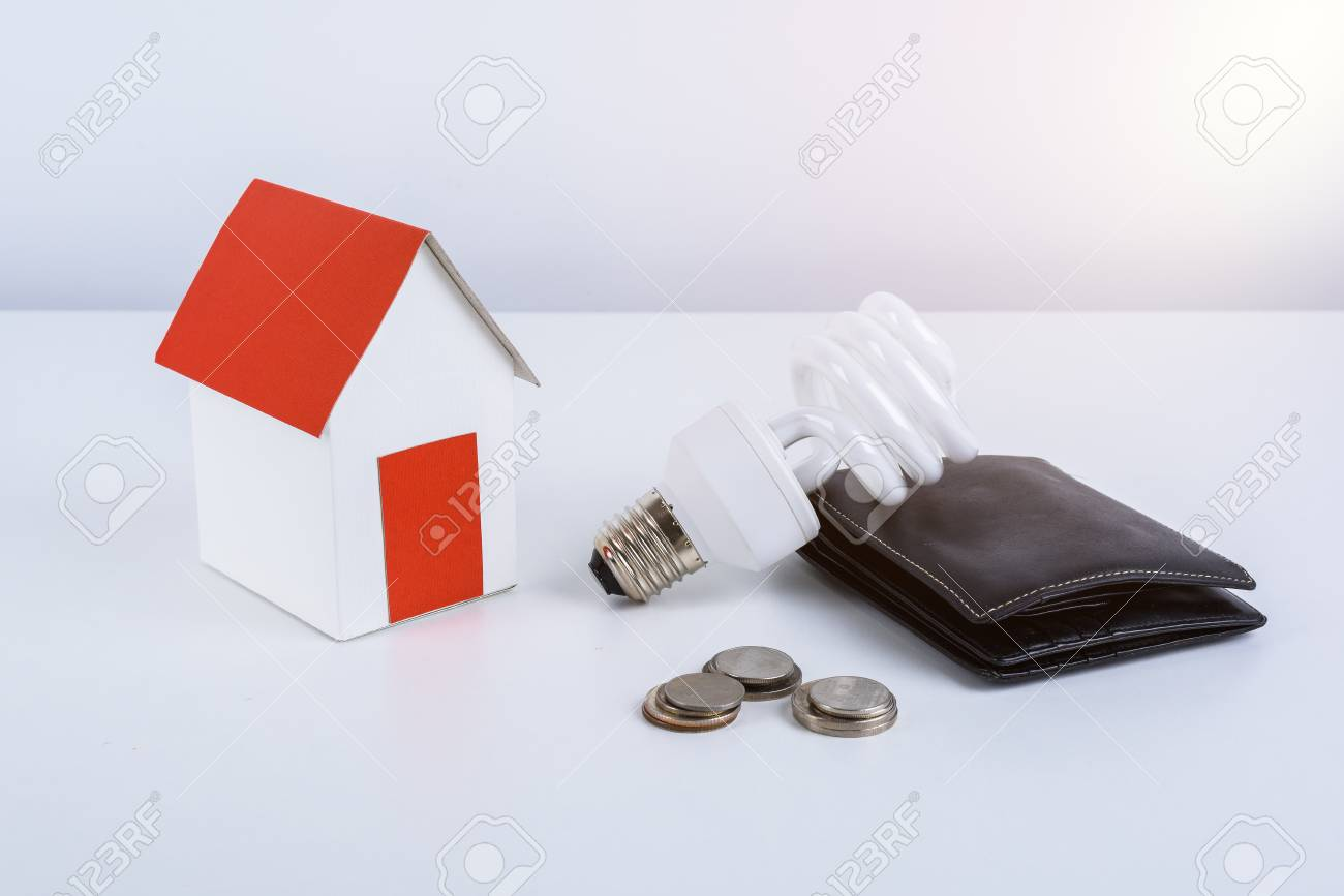 Energy Savings Lamp With Wallet And Coins, Paper House Model ...