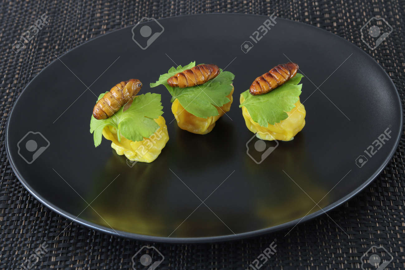 Insects food.Fried silkworm pupae with Chinese steamed dumpling close up on black dish.Silkworm pupae are rich protein and good fats.Insects are food future for all people - 157213953