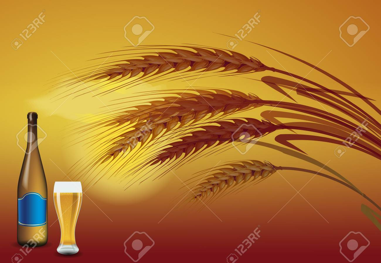 Barley grains at the sunset on the back. In front of a beer bottle and a glass of beer Stock Vector - 12476814