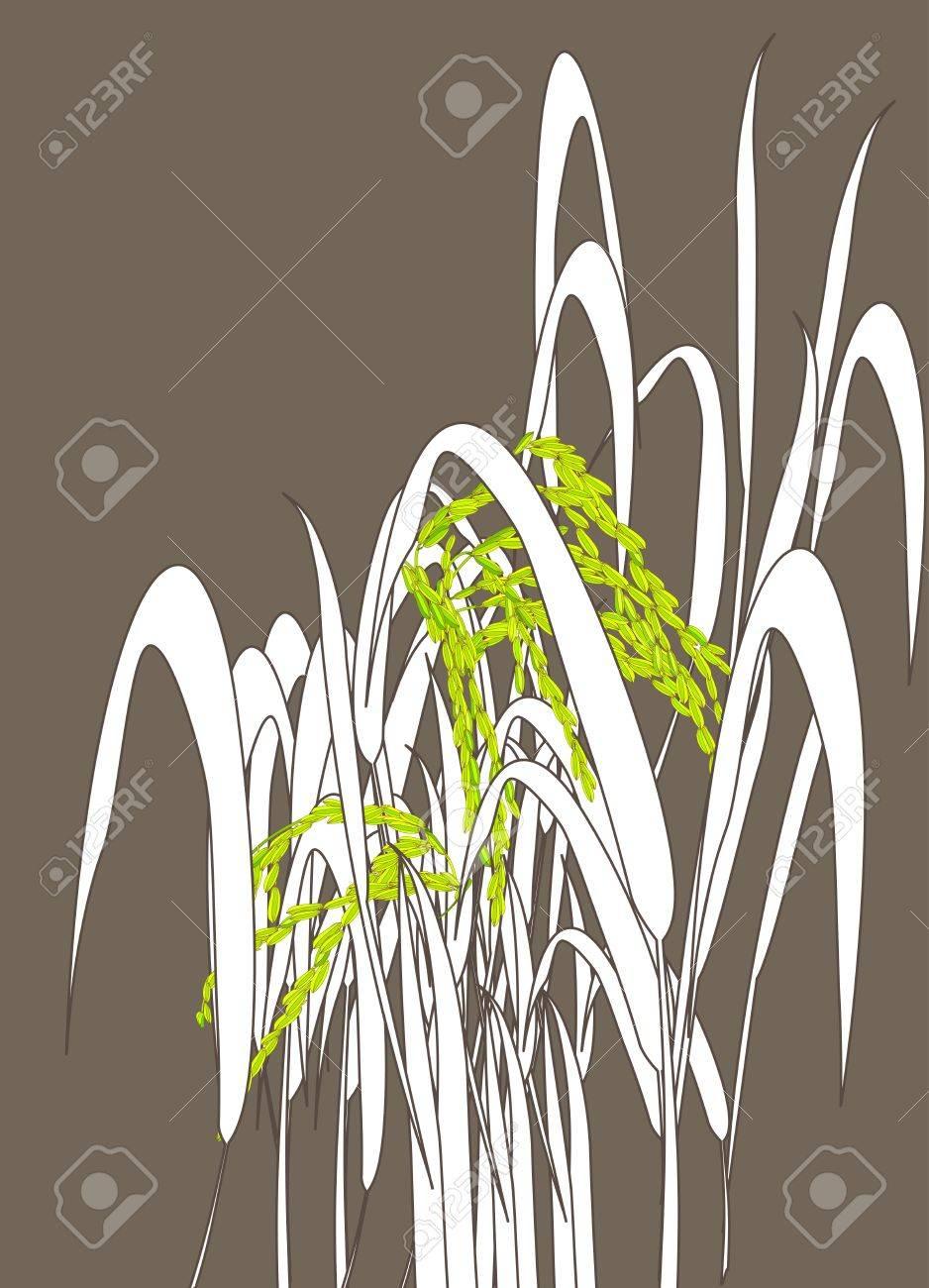 Graphic work of rice grain paddy Stock Vector - 13395043