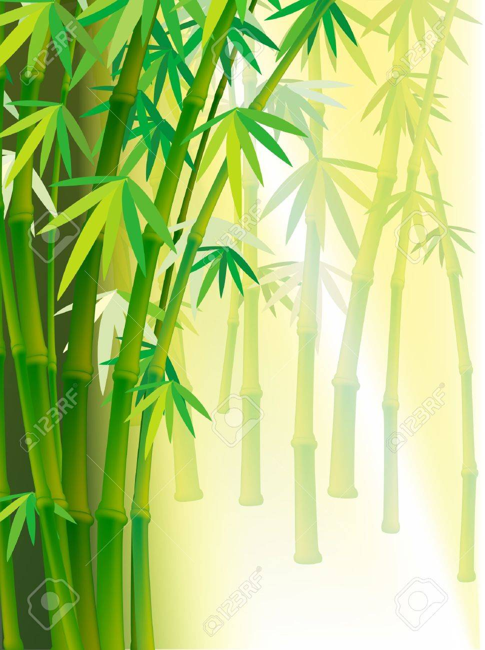 Illustration Bamboo background with copy space Stock Vector - 13986679