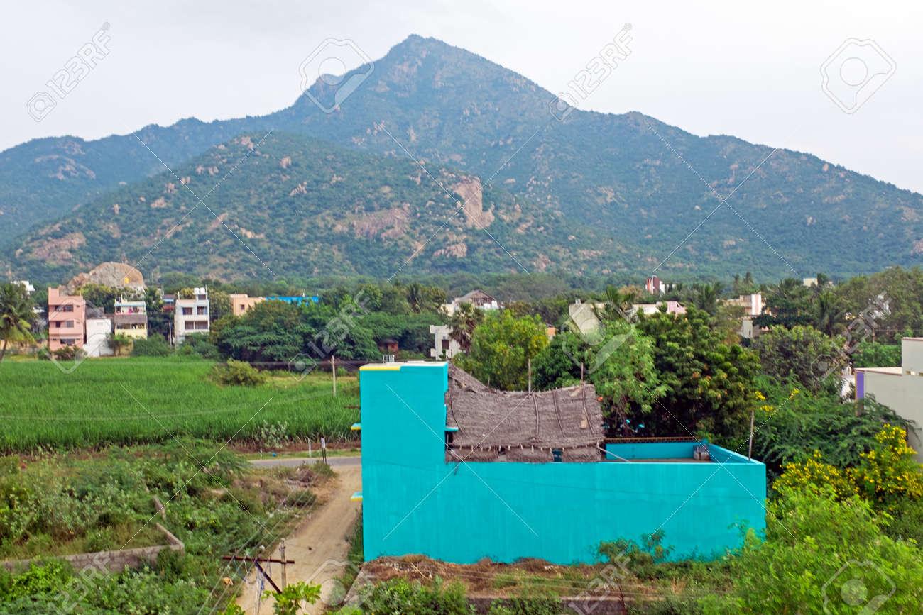 The holy mountain Arunachala in Tamil Nadu India - 173316371