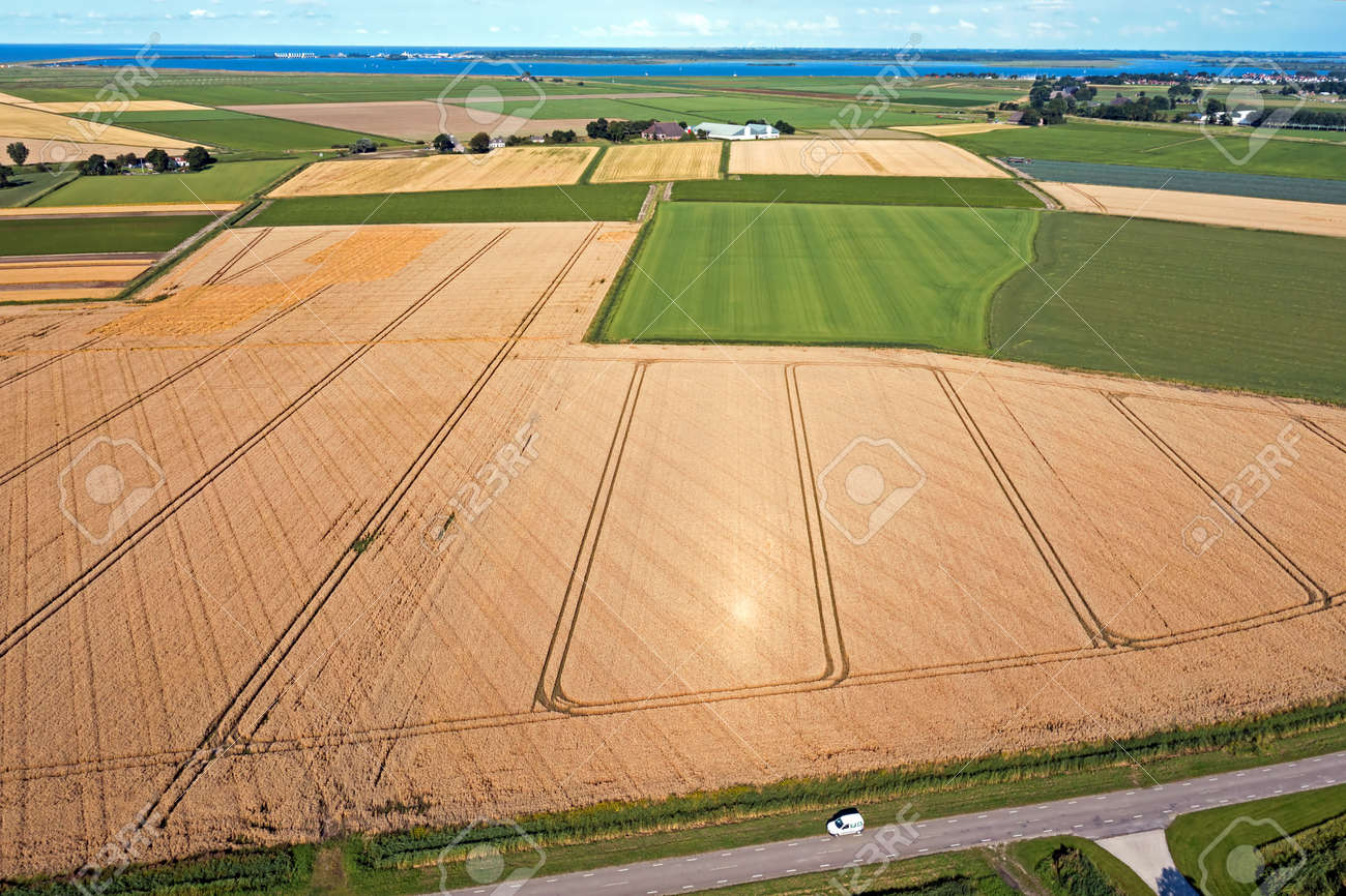 Aerial from wheat fields ready for harvest in the countryside from the Netherlands - 173318519