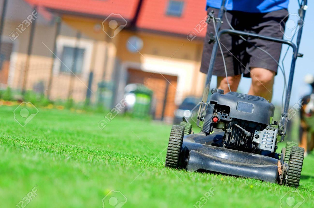 Man mowing the lawn. Gardening Stock Photo - 5340173