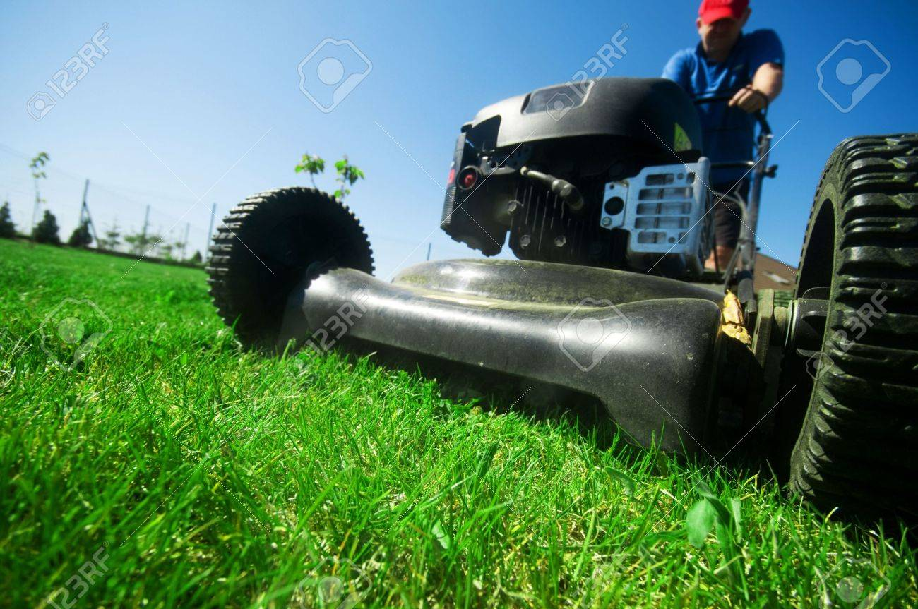 Man mowing the lawn. Gardening Stock Photo - 5340202