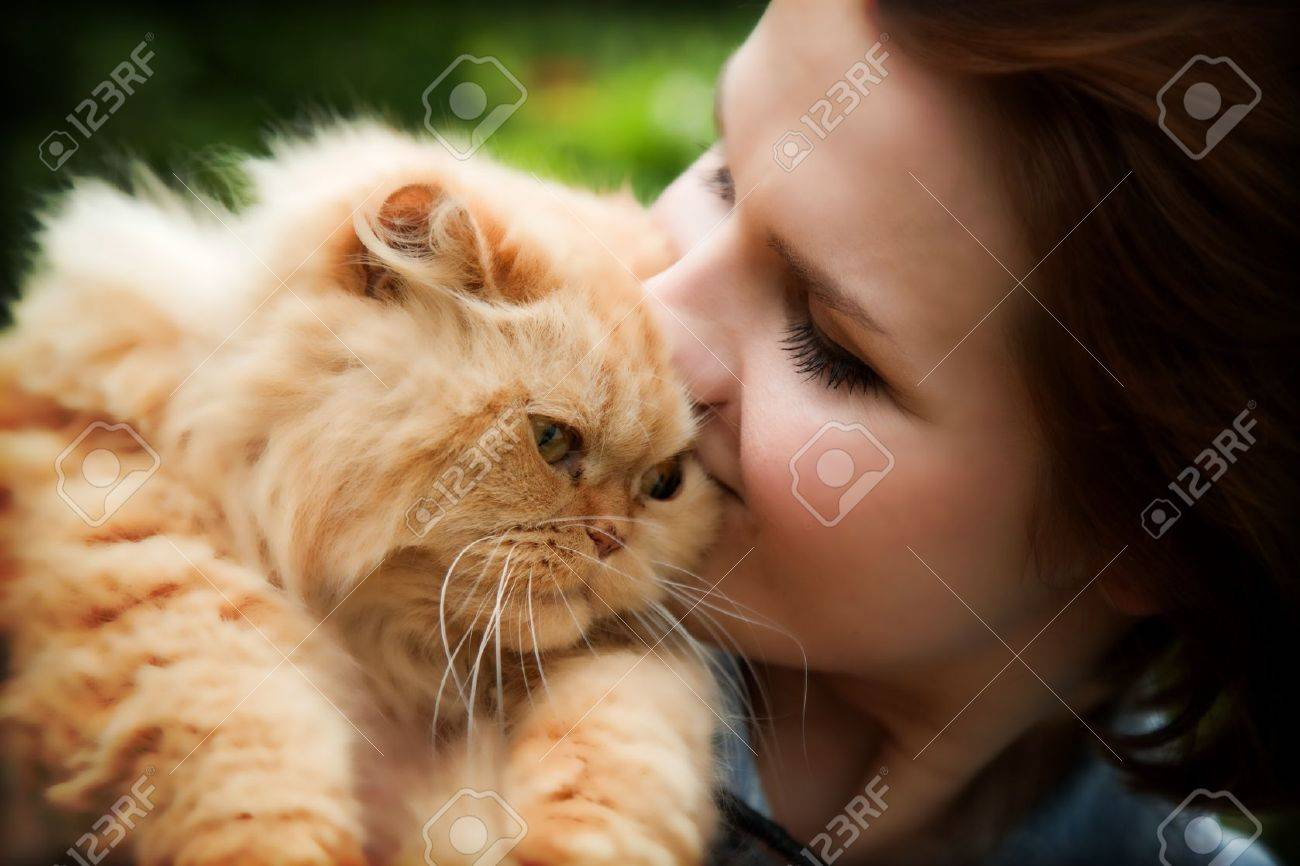 Young woman with Persian cat playing. Outdoors portrait Stock Photo - 14446355