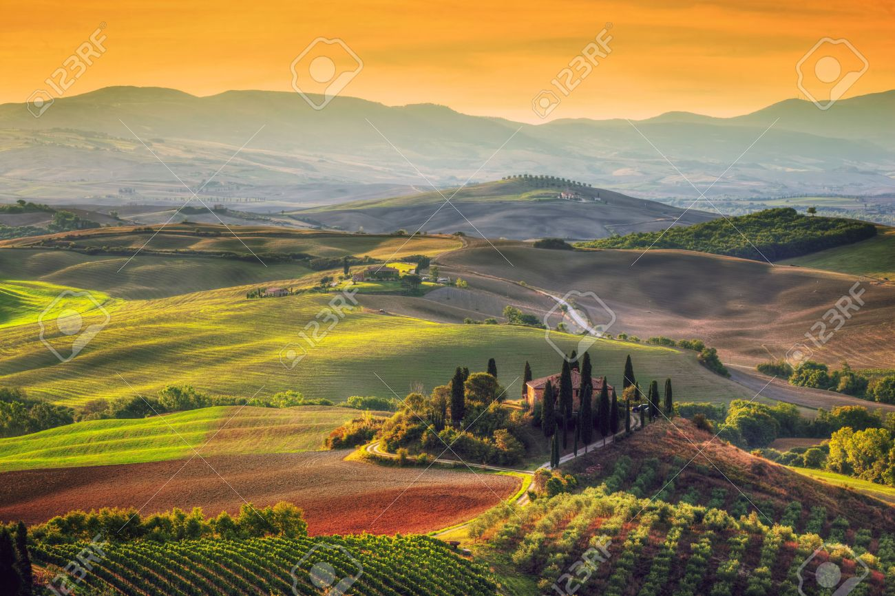 Tuscany landscape at sunrise. Typical for the region tuscan farm house, hills, vineyard. Italy - 47026391