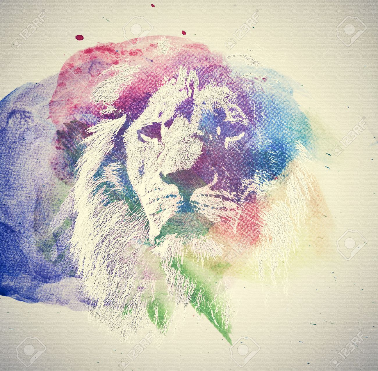 Watercolor Painting Of Lion Abstract Colorful Art Unique Stock