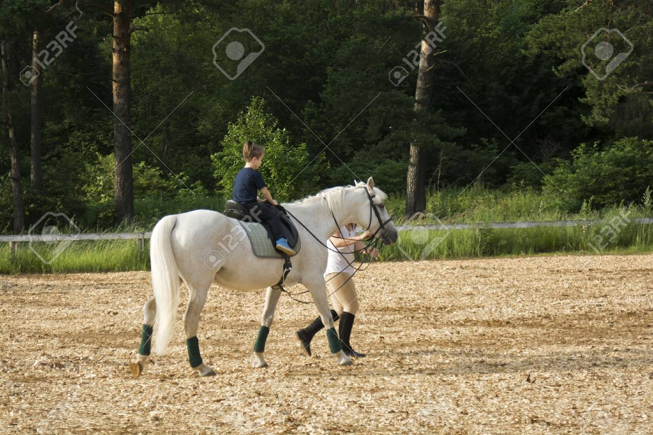 Beautiful View Of A Baby Riding A Horse Stock Photo Picture And Royalty Free Image Image 43287629