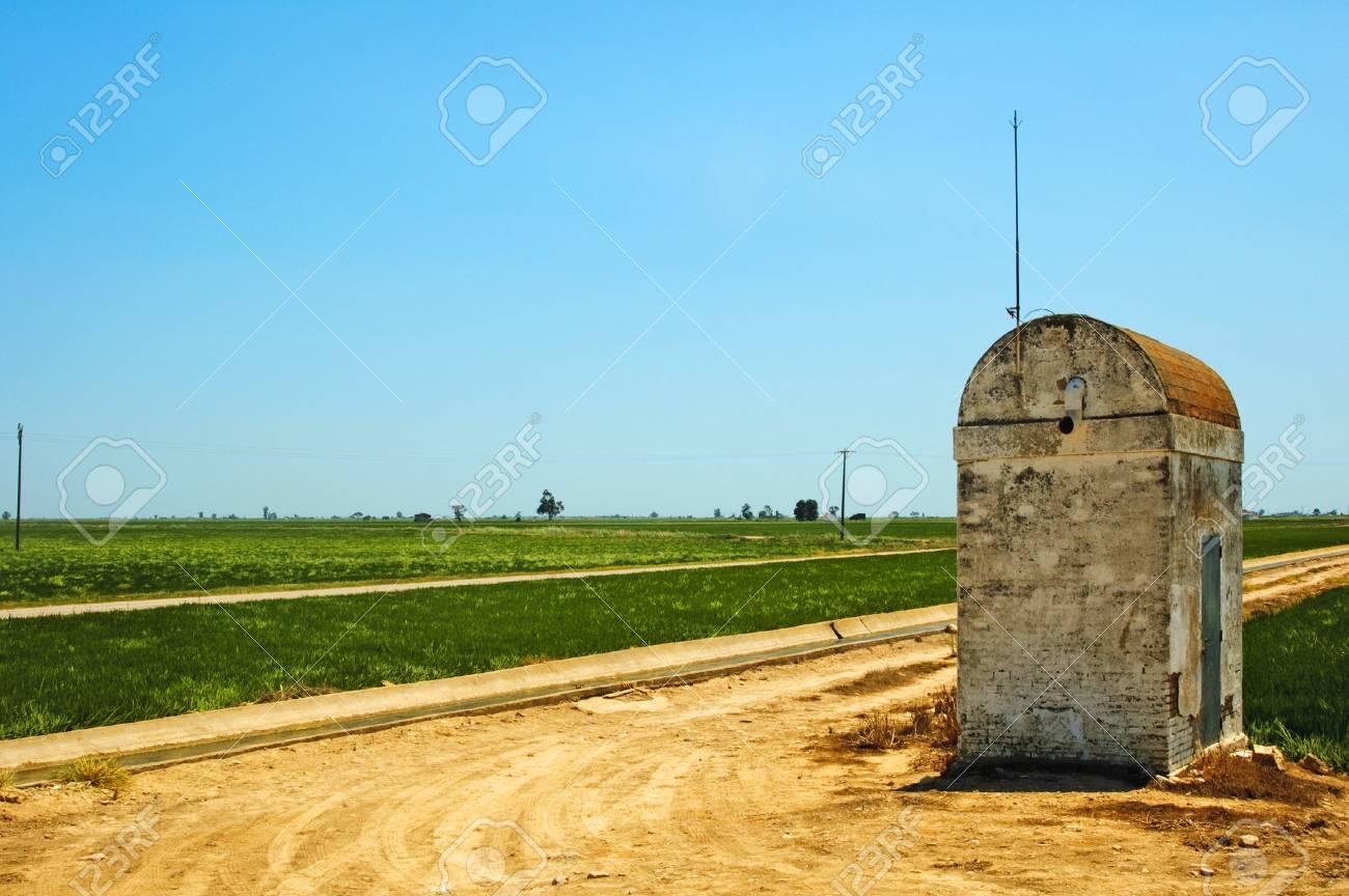 view of a paddy field in Delta de l'Ebre, Catalonia, Spain Stock Photo - 7036198