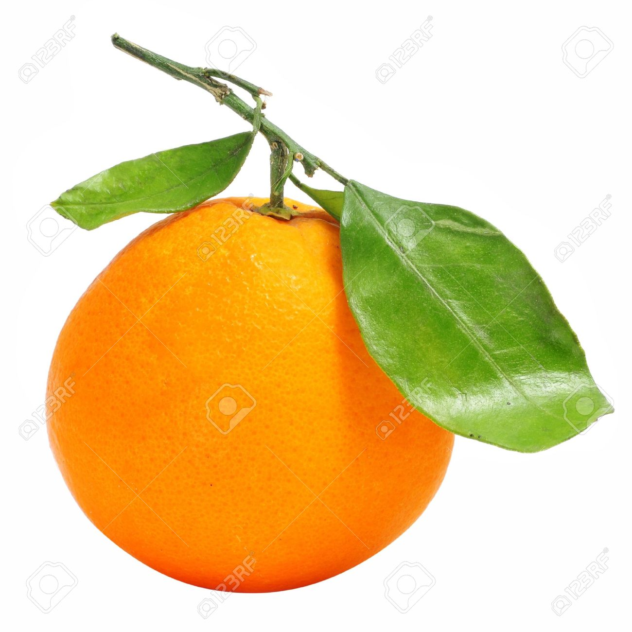 an orange isolated on a white background - 8387957