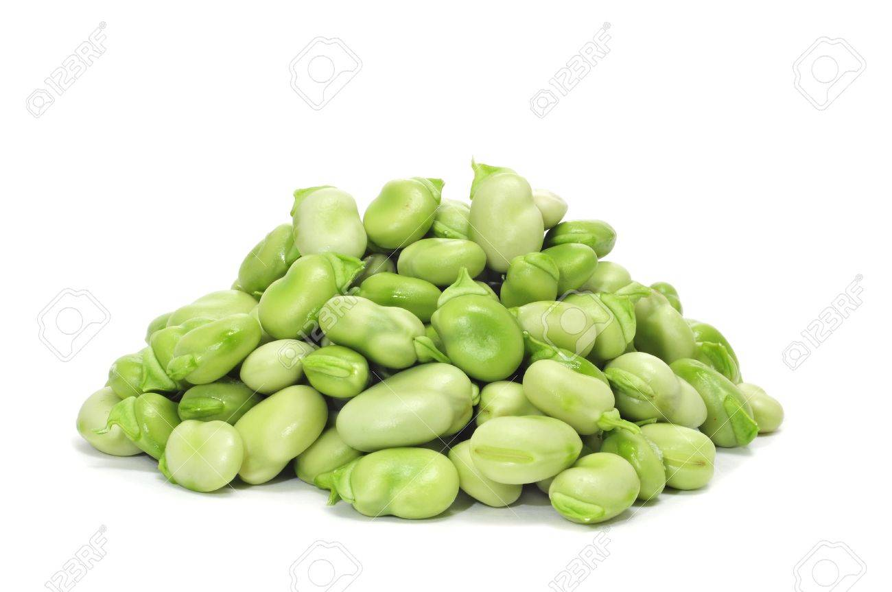 close up of some broad beans on a white background Stock Photo - 9635260