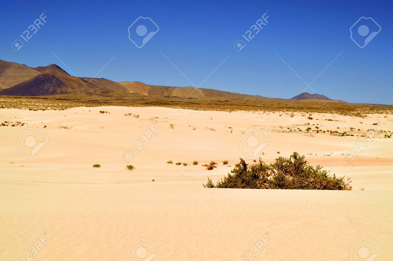 a view of Natural Park of Dunes of Corralejo in Fuerteventura, Canary Islands, Spain Stock Photo - 17794233