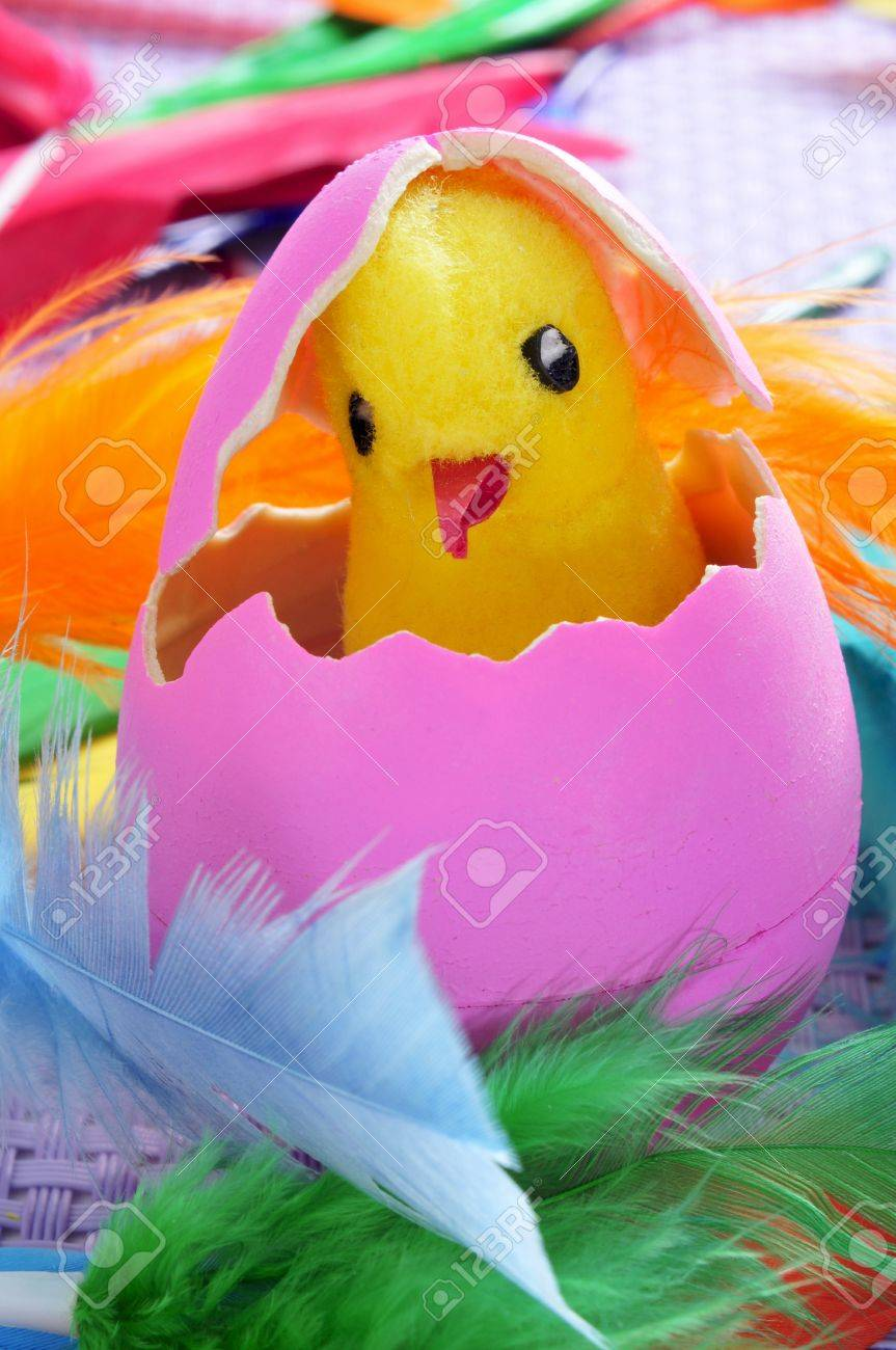 a teddy chick emerging from a hatched pink easter egg, and feathers of different colors Stock Photo - 18176497