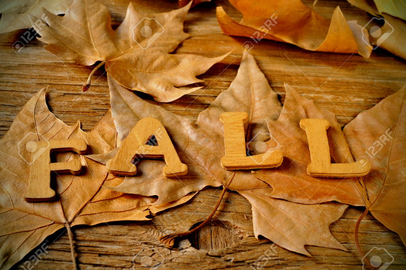 wooden letters forming the word fall and some autumn leaves on