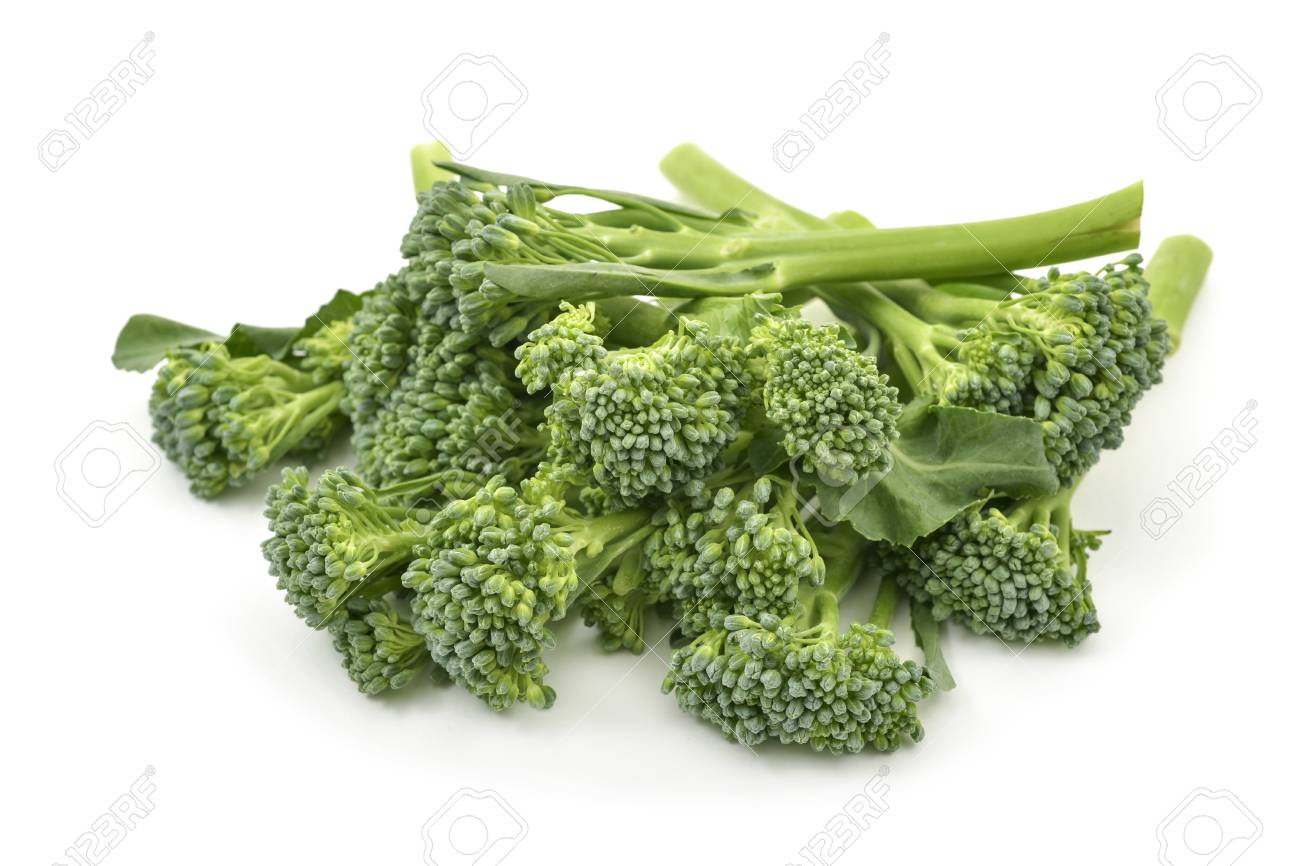 closeup of some stems of broccolini on a white background - 95878279
