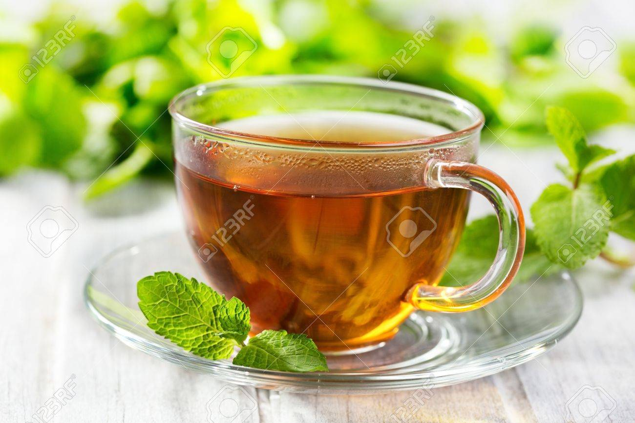 cups of tea with mint on wooden table Stock Photo - 15638942