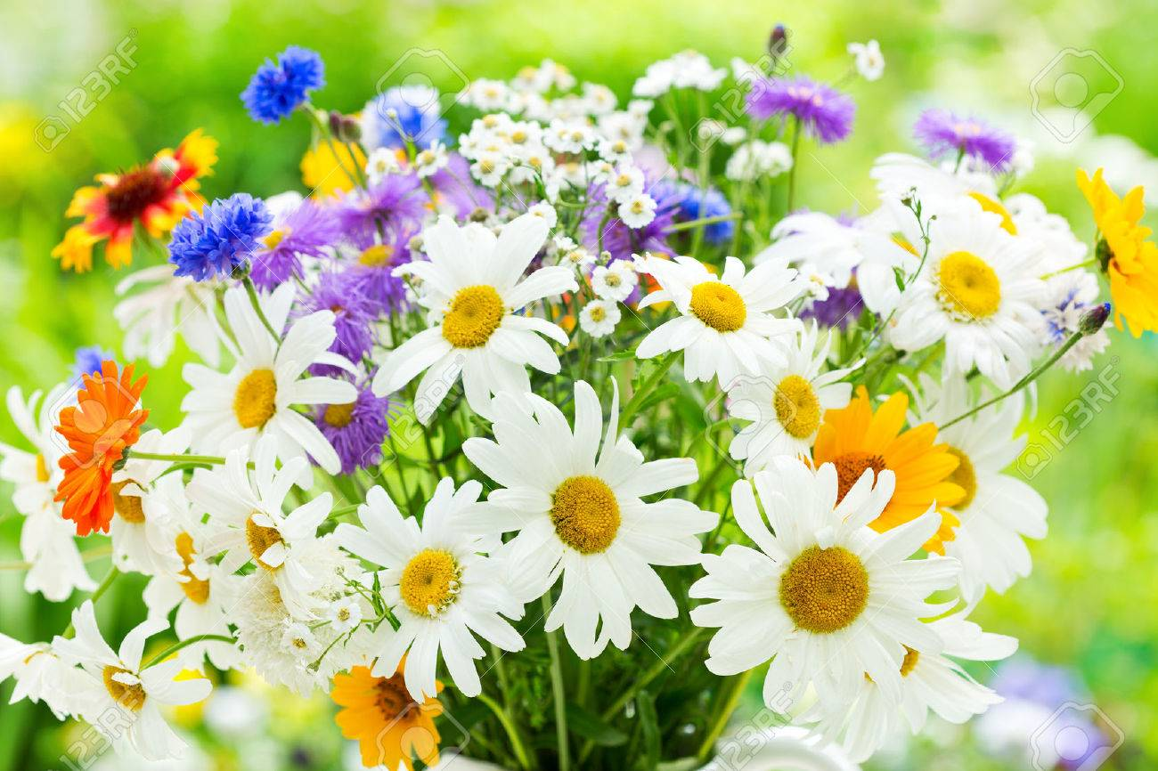 bouquet of summer flowers on green background - 43275254