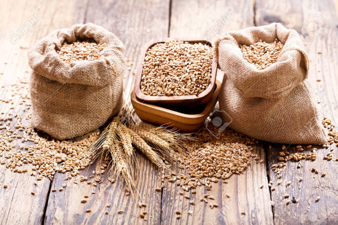 wheat grains in sacks on wooden table - 55704079