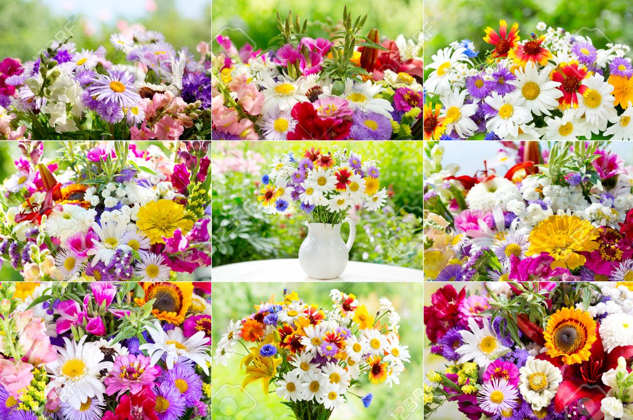 Collage Of Bouquets Of Summer Flowers On Green Background Stock ...