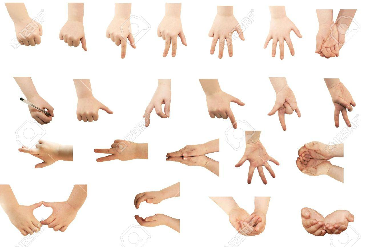 Selection of hands on white background Stock Photo - 8111799