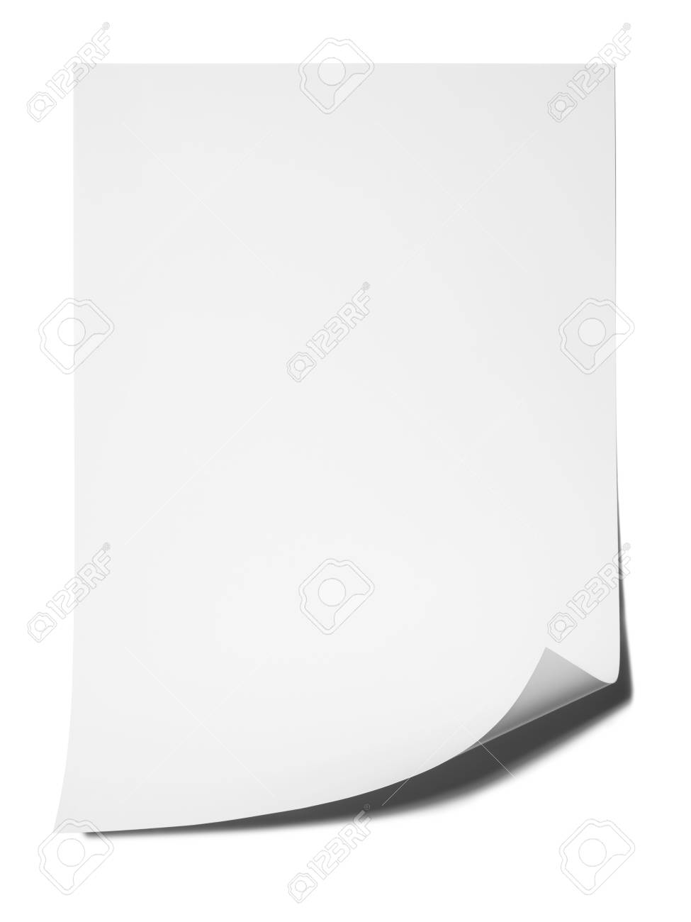 photograph of blank piece of paper with natural shadow and curled