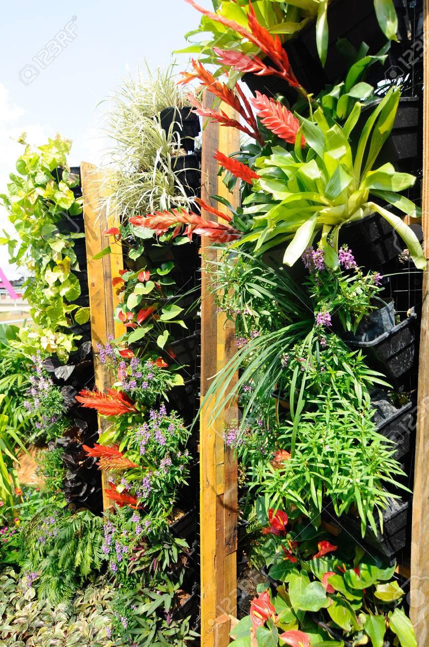 Pflanzen Der Blumen Und Gemüse In Plastiktöpfen Es Wurde Als Eine