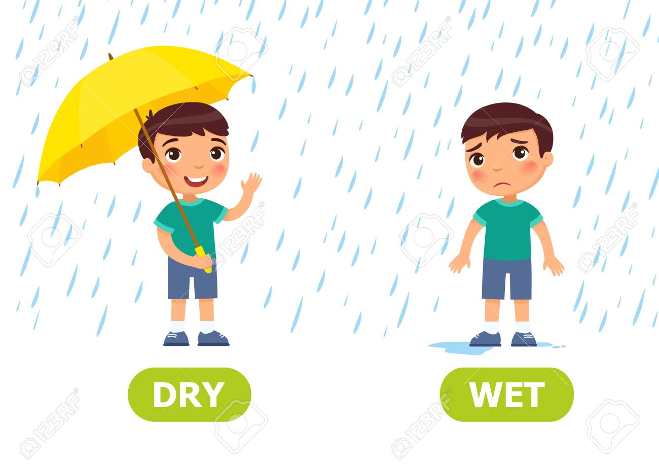 The boy stands in the rain with an umbrella and without an umbrella. Illustration of opposites dry and wet. Card for teaching aid, for a foreign language learning. Vector illustration on white background, cartoon style. - 123007530