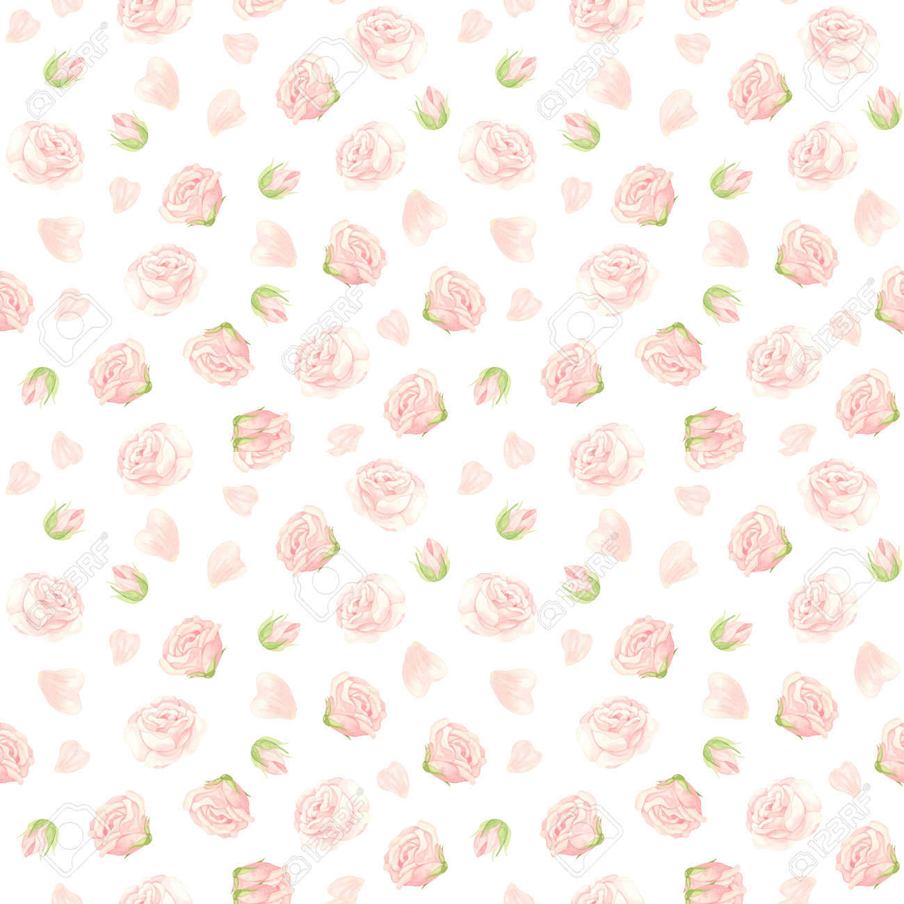 Pink roses seamless pattern. Flowers, buds and rose petals. Floral background in vintage style. Watercolor clipart. - 171478276