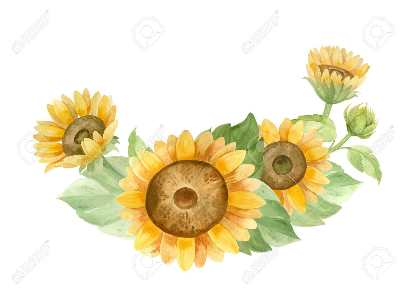 Sunflowers, flower arrangement for Sunflower products, Harvest Festival, Thanksgiving Day. - 172376130