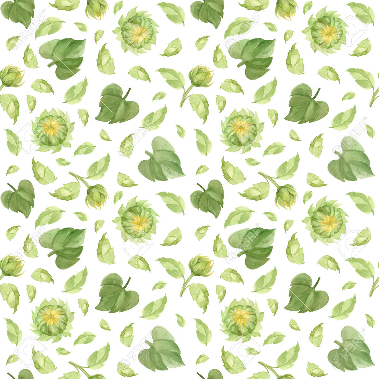 Sunflower buds and leaves seamless pattern. Watercolor clipart on white background - 172490660