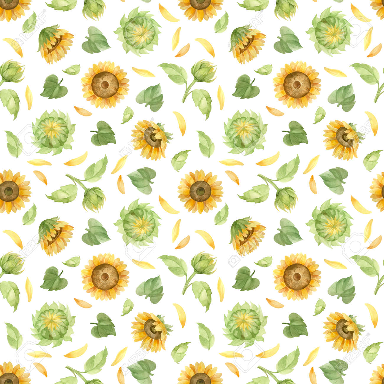 Sunflowers seamless pattern, watercolor clipart - 173083452