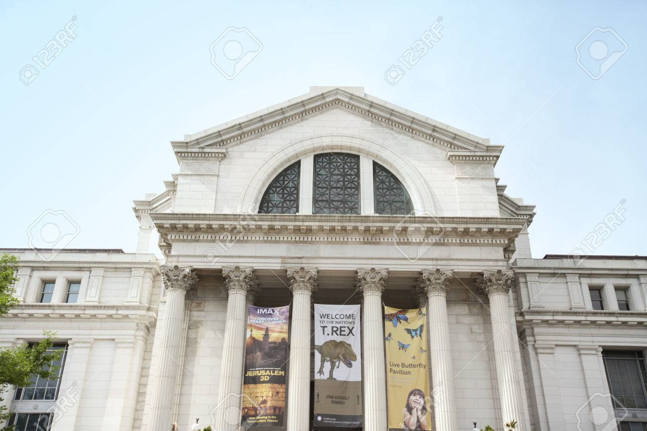 WASHINGTON D.C., MAY 26, 2014: The National Museum of Natural History is a natural history museum administered by the Smithsonian Institution, located on the National Mall in Washington, D.C., United States. - 38714155