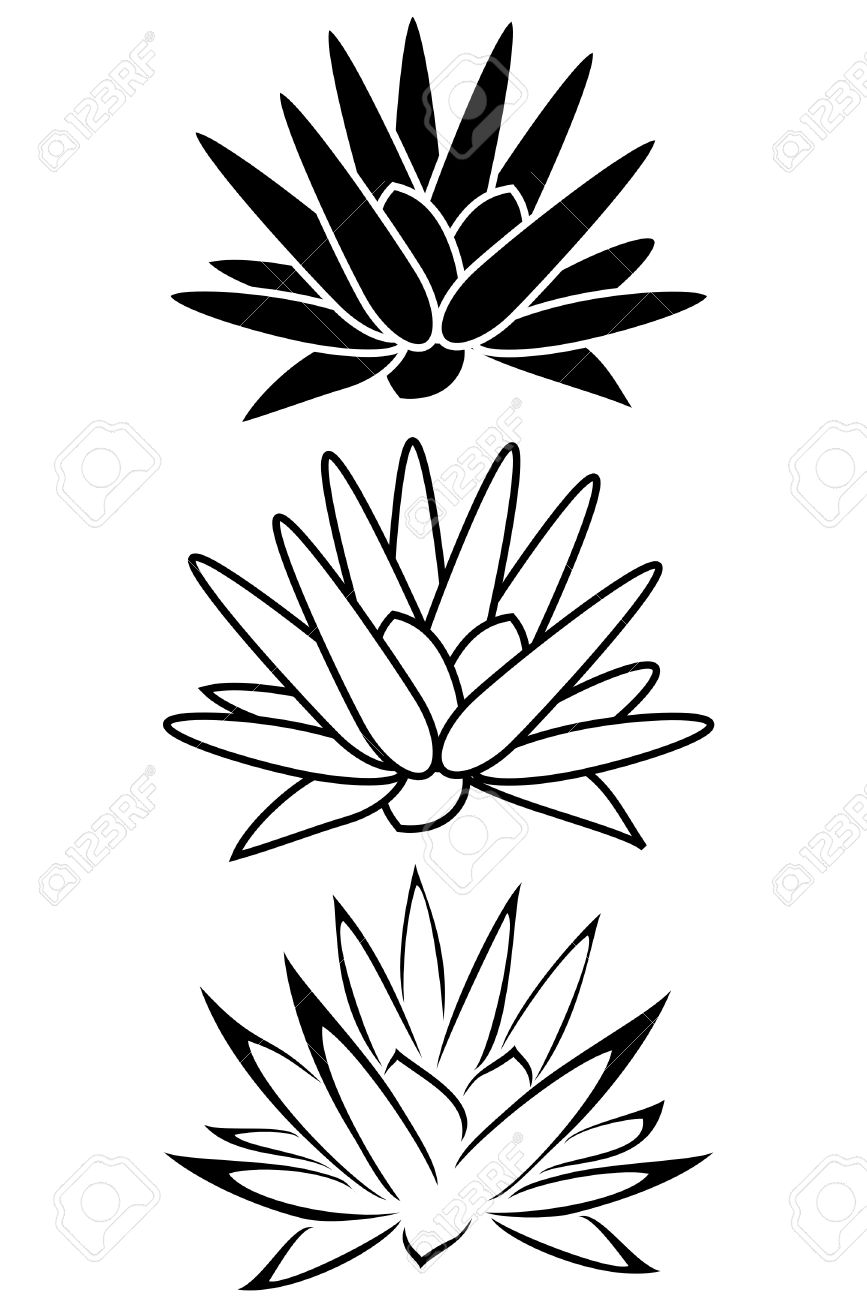 A Lotus Flower Tribal Tattoo Set Royalty Free Cliparts Vectors And