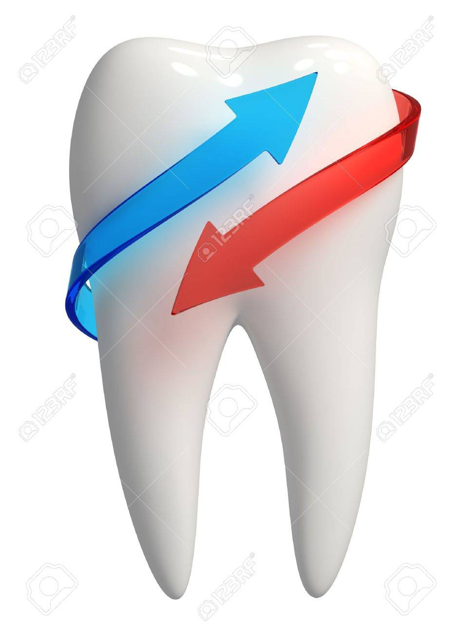 3d rendered photo-realistic white tooth with blue and red semi-transparent arrows - Isolated icon on white background Stock Photo - 11035944
