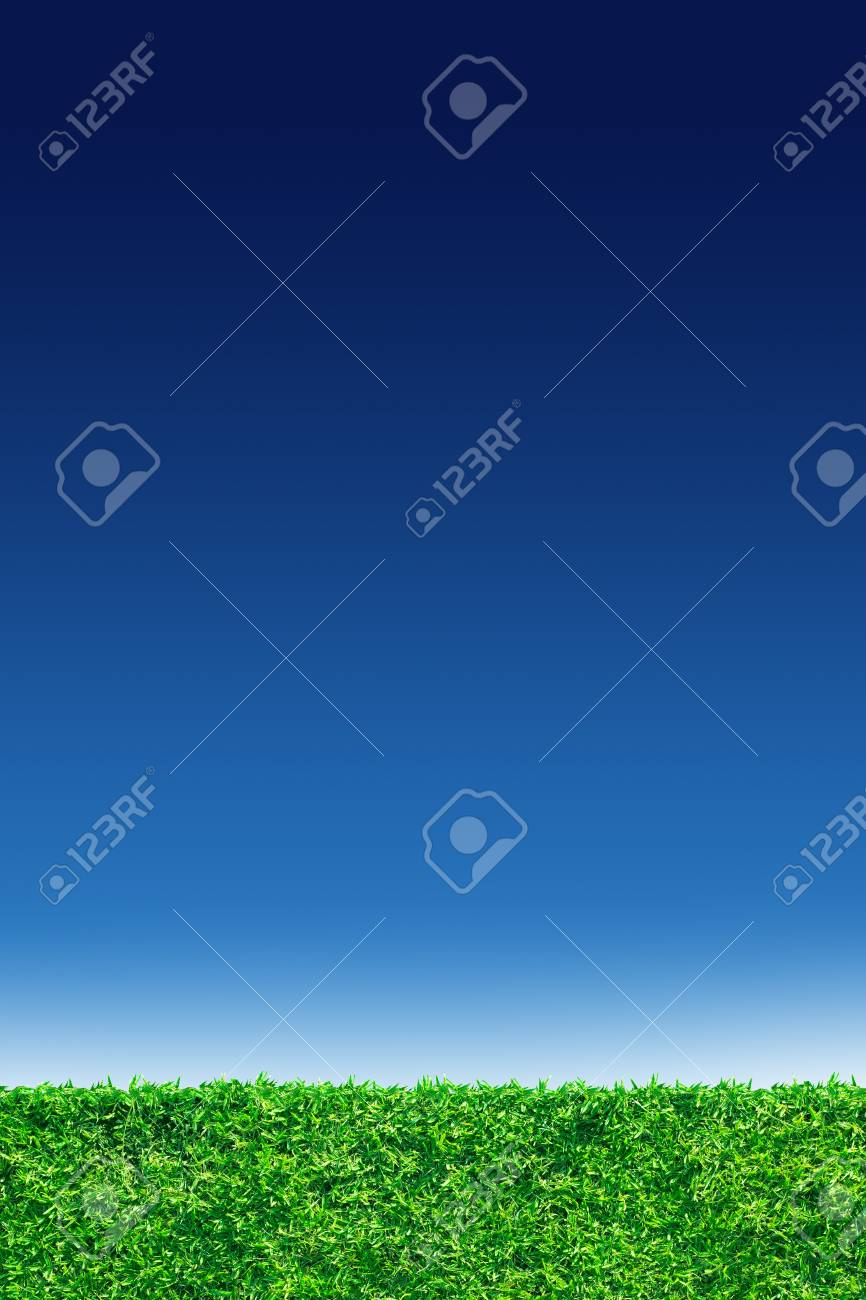 green grass and blue sky Stock Photo - 14555853
