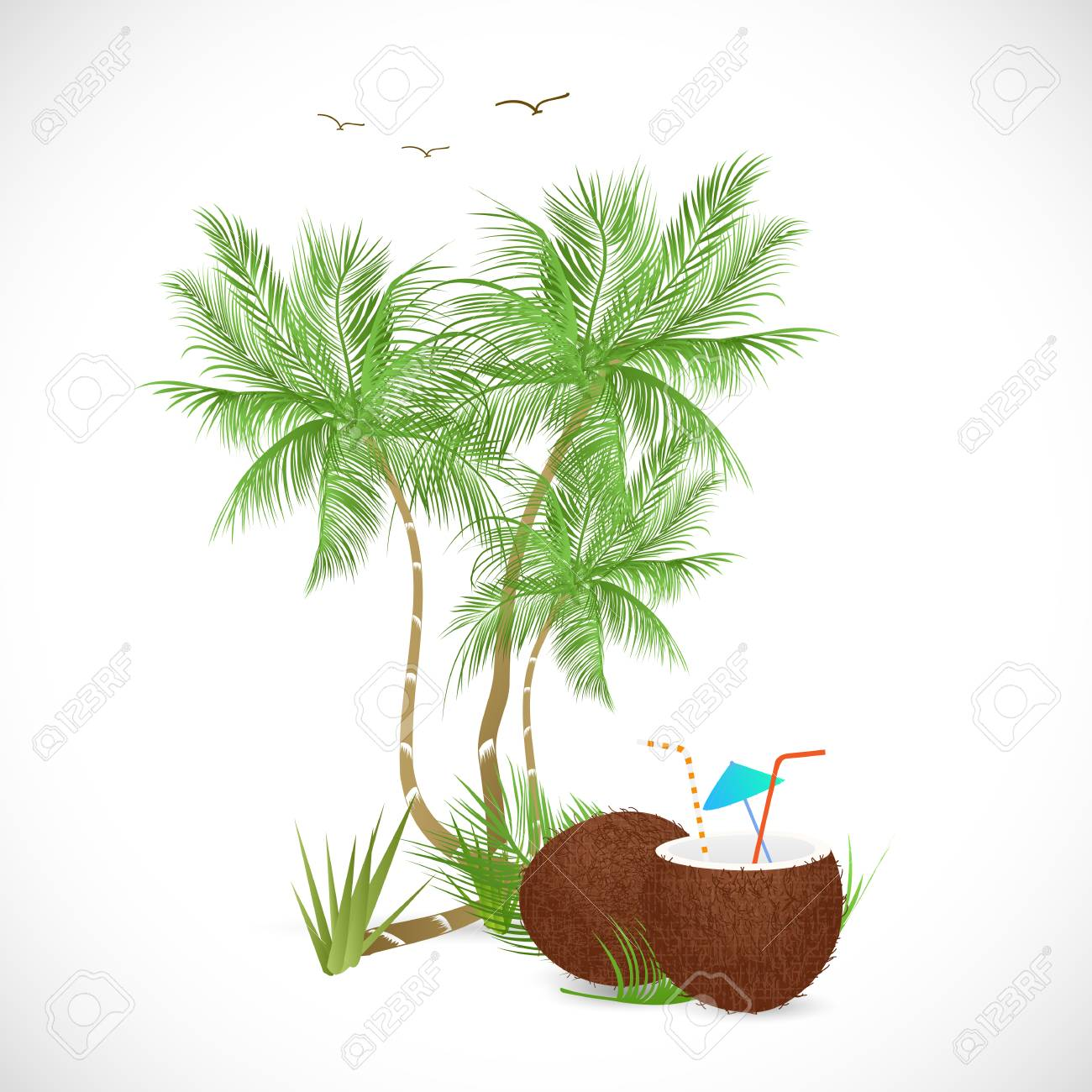 Illustration of a coconut drink and palm trees isolated on a white background. - 97016254