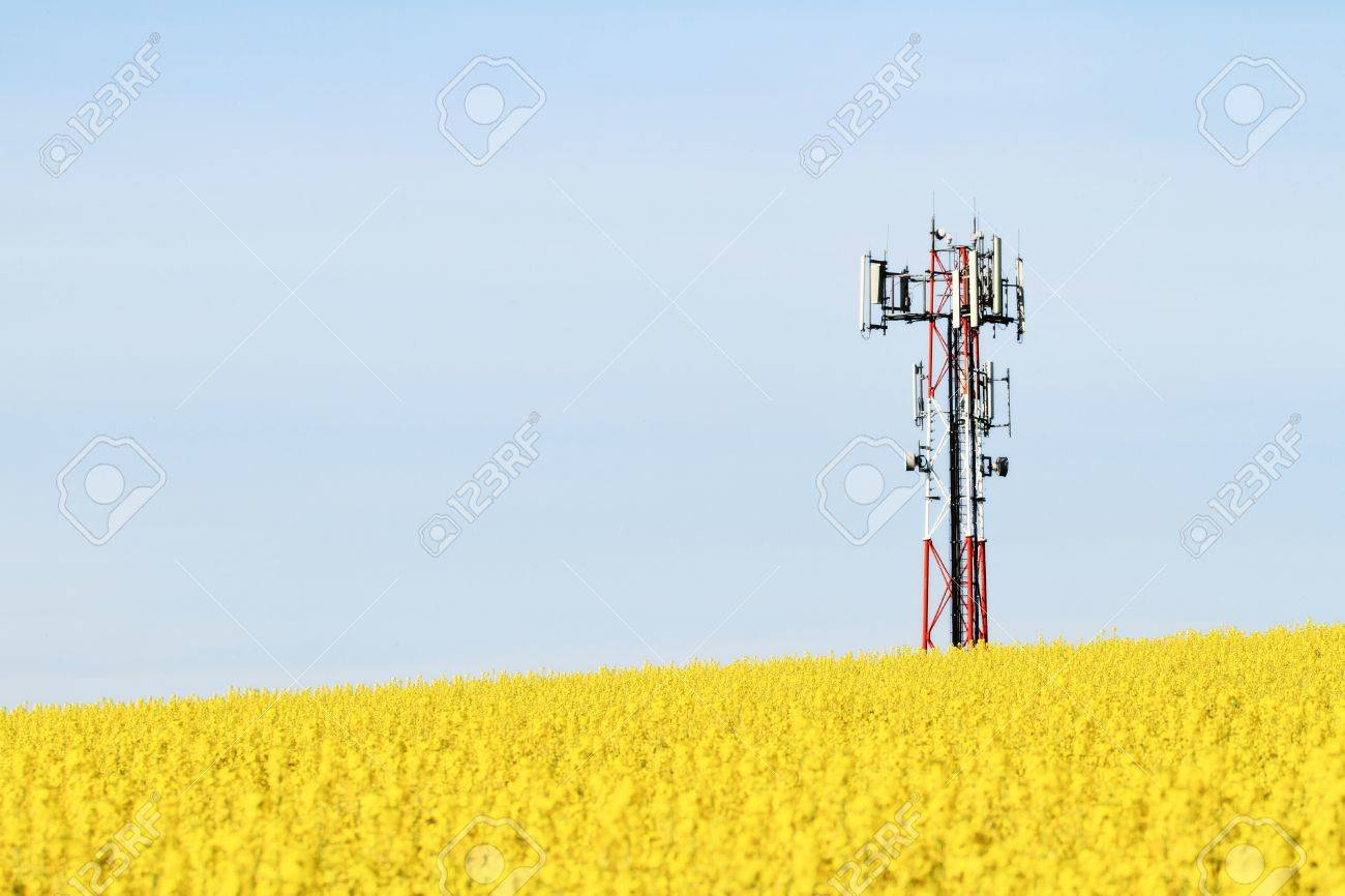 Gsm transmitter on a blooming field Stock Photo - 16257587