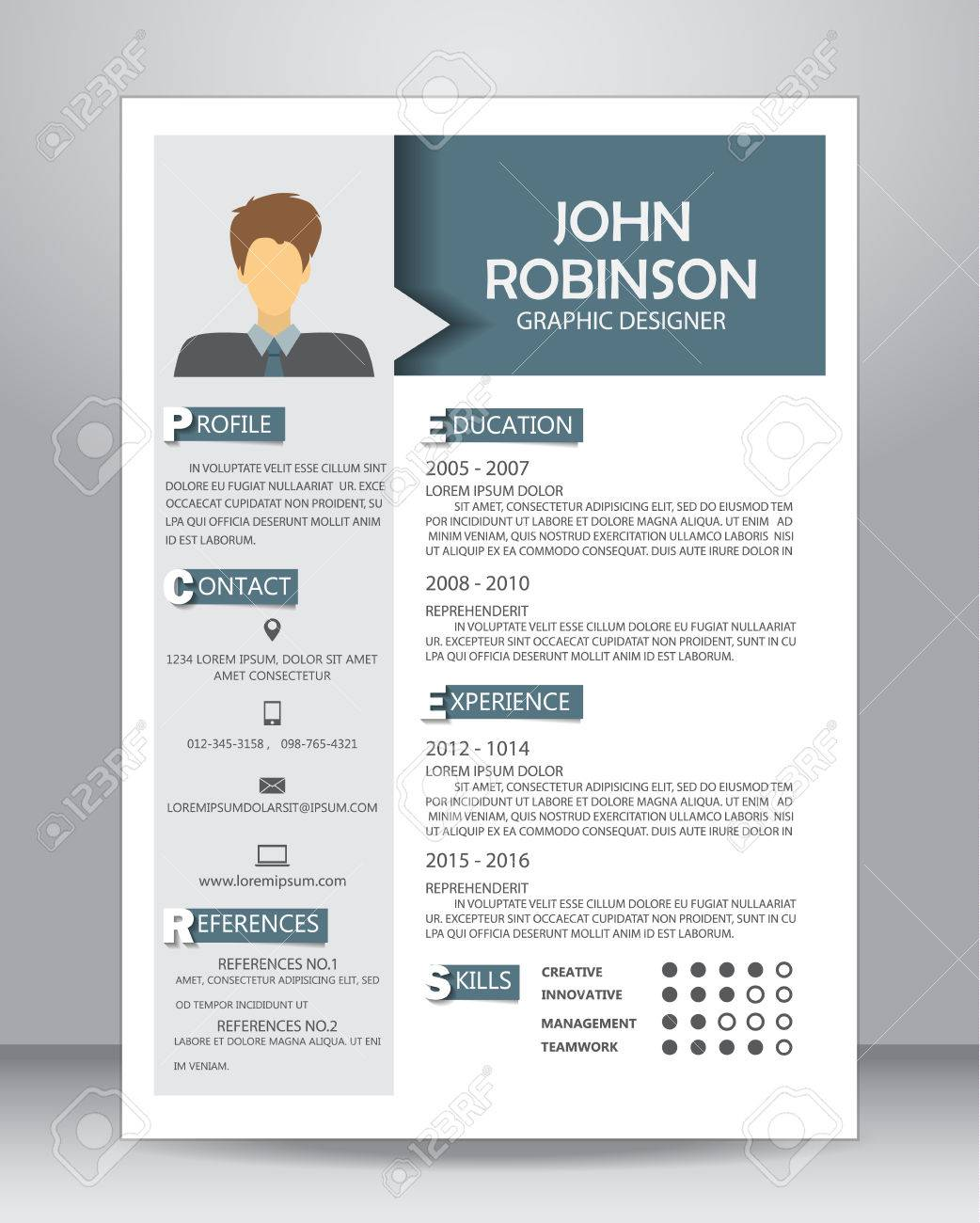 job resume or cv layout template in a4 size vector illustration