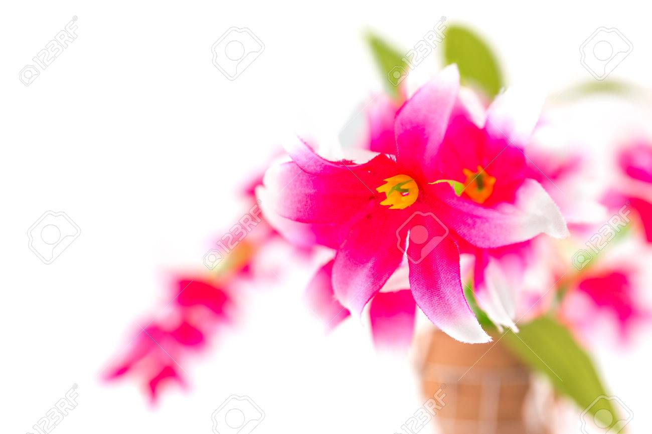 Pink Fake Flowers On White Background Stock Photo Picture And