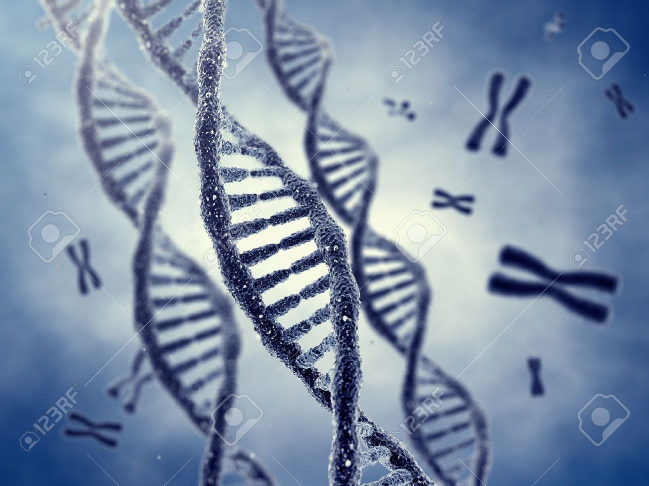 Dna double helix molecules and chromosomes Stock Photo - 15398795