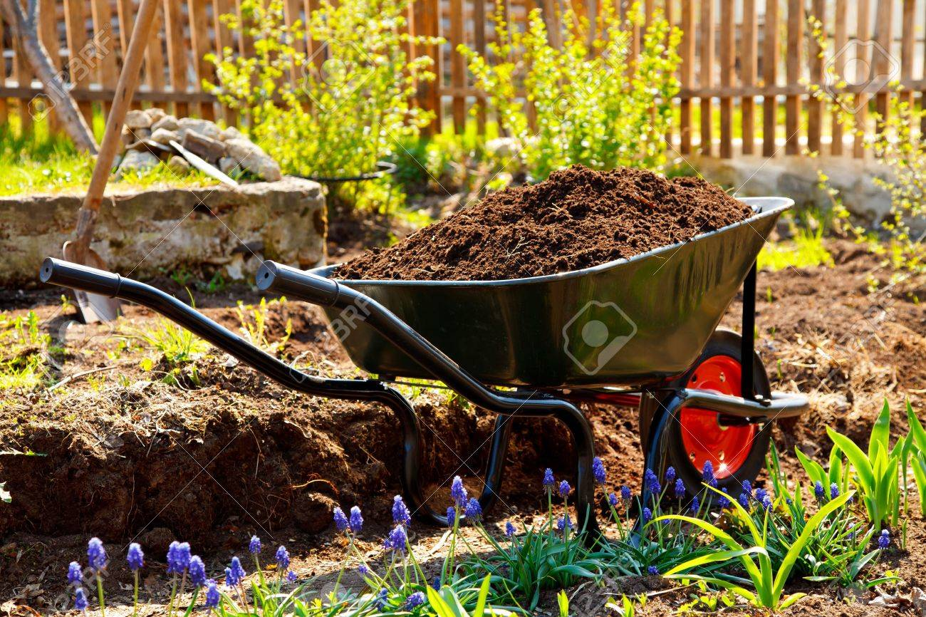 Wheelbarrow Full Of Soil In A Garden Stock Photo, Picture And ...