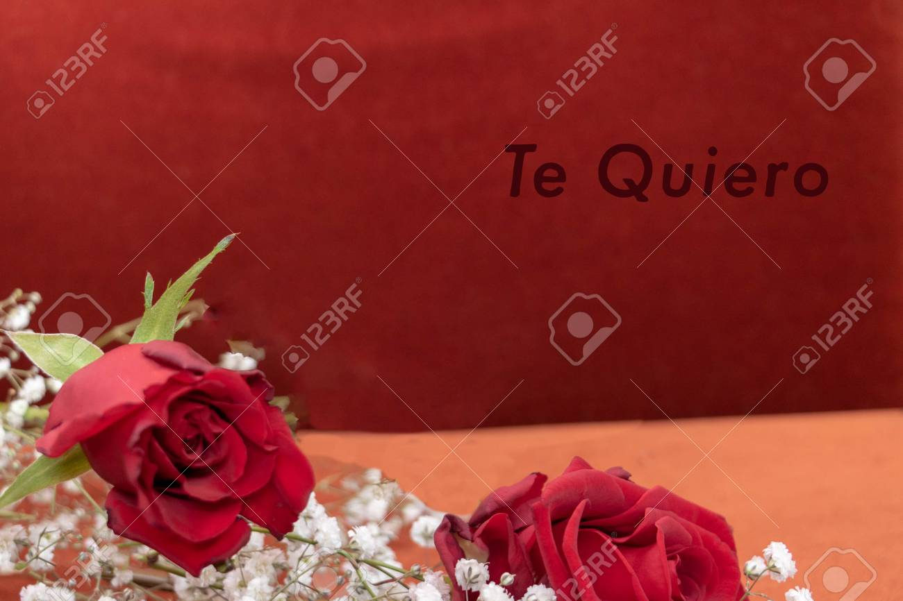 Valentine S Day Gift A Rose And The Message In Spanish